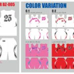 Reversible_BZ005_color