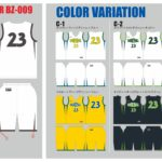 Reversible_BZ009_color
