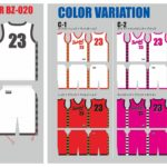 Reversible_BZ020_color