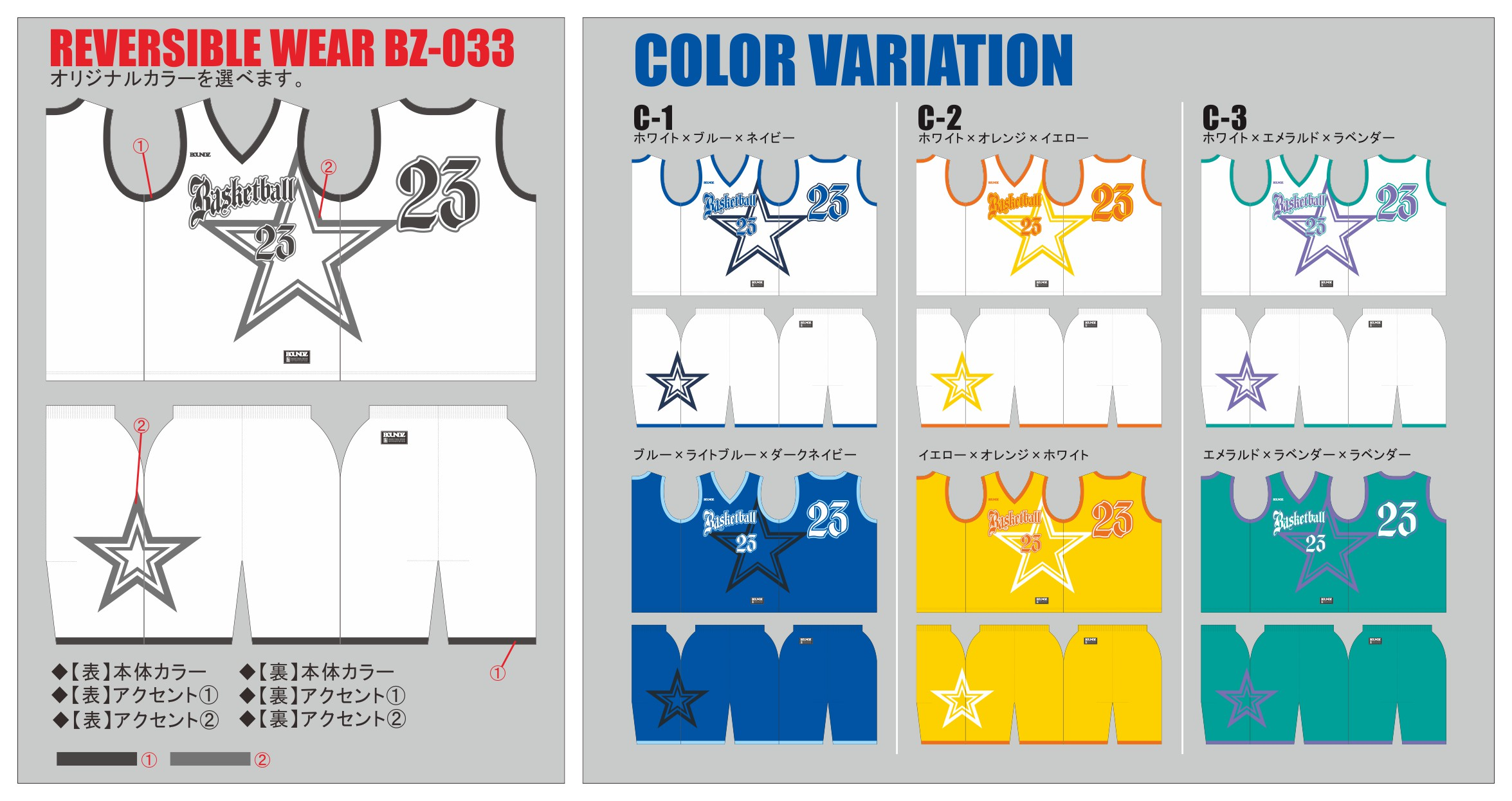 Reversible_BZ033_color